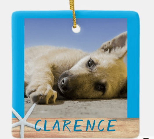 Pet photo ornament for Christmas tree dogs name double sided two pets starfish
