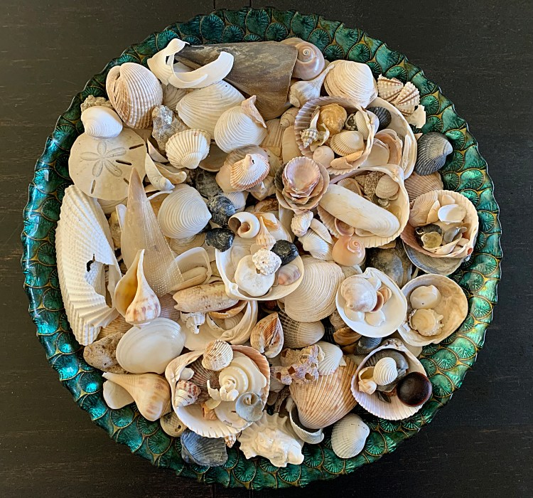 Large round platter full of seashells from my collection