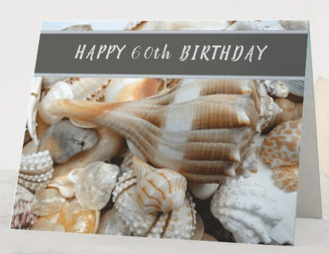 Seashells happy birthday lightning whelk beach shells tropical photography custom greeting