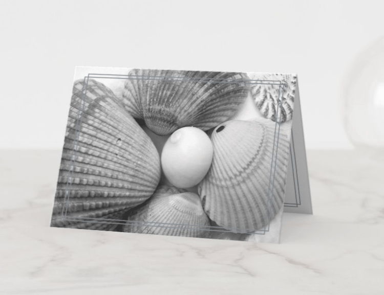 black and white seashell note cards custom message