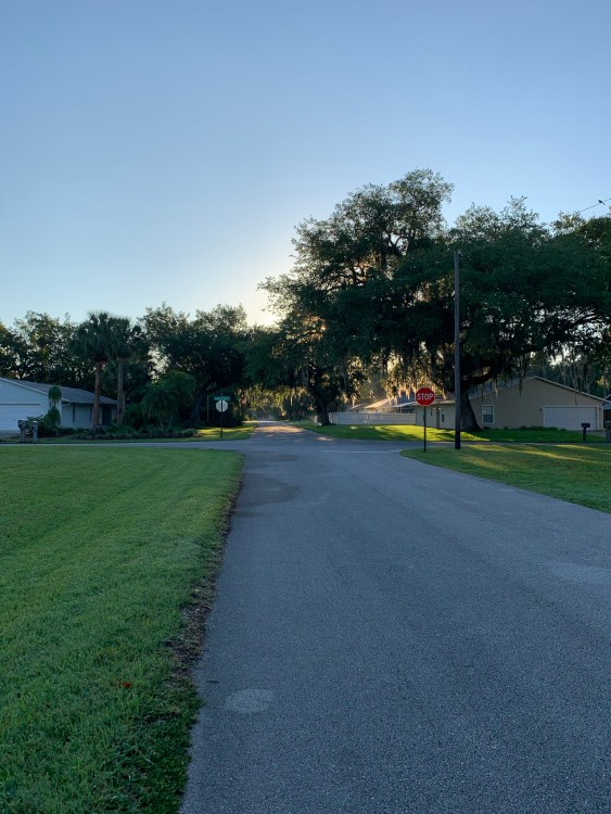 Florida road walking early morning