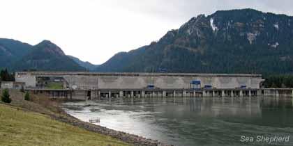 editorial-130315-2-2-Bonneville-Dam (1)
