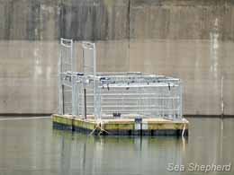 editorial_120328_1_3_Sea_Lion_Cages_B_Dam
