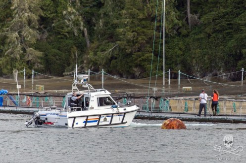 news-170824-1-6-SA-RCMP-arrive-after-a-call-from-Marine-Harvest-head-office-about-an-occupation-of-Swanson-Island-fish-farm-002-7625-1200w