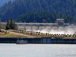 editorial_120423_1_1_dam_trap_mountain