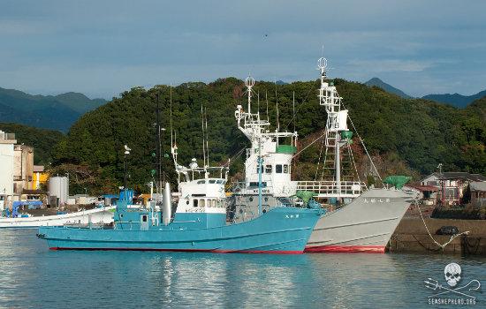 editorial-140417-1-2-jstcw-ships-in-taiji.jpg