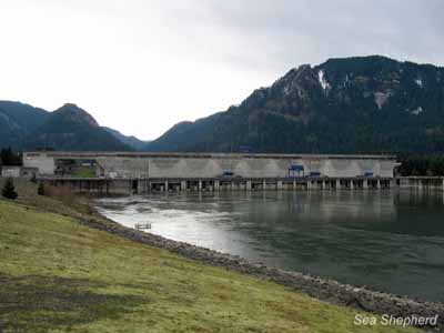 editorial_121018_1_2_Bonneville_Dam
