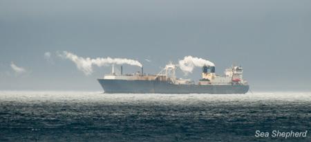 editorial-130416-1-3-Aker-BioMarines-Krill-fishing-and-processing-factory-ship-Antarctic-Sea