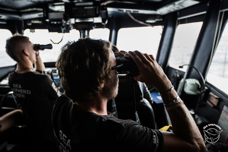 180920-OM-SA-Sea-Shepherd-crew-survey-a-squid-boat-in-operation-_66A9114