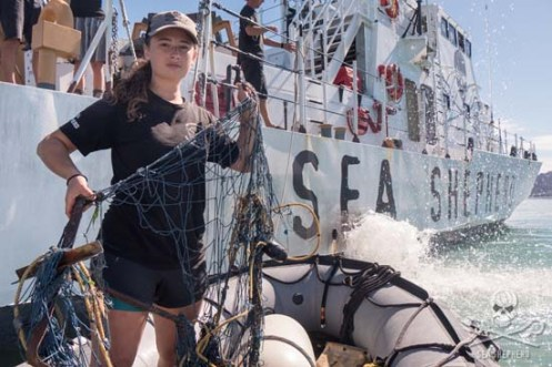 Katja Whalter holds up an illegal totoaba net the she and the crew retrieve in the vaquita habitat. Photo: Carolina A Castro