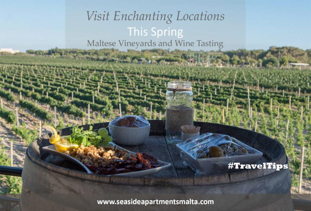 Wine tasting in Malta