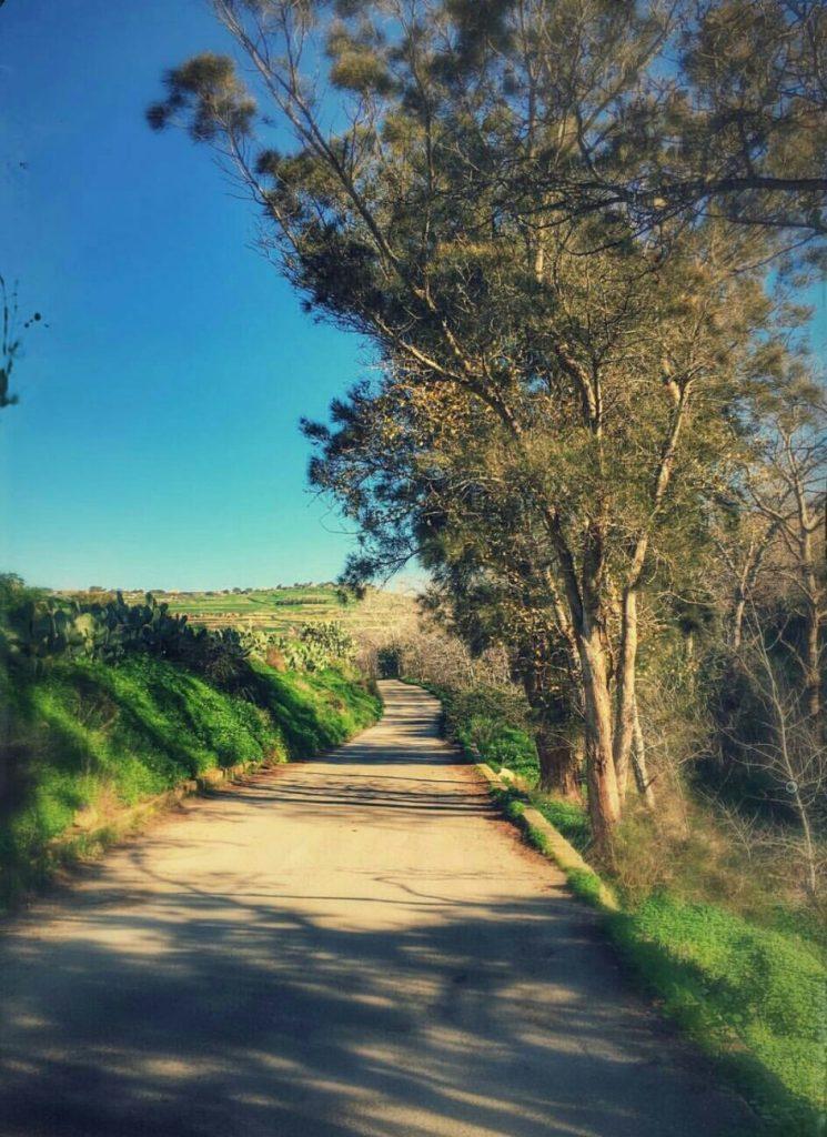 Dwejra Maltese country side road