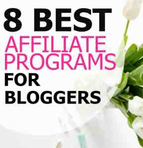 The Top 8 Affiliate Networks for New Bloggers