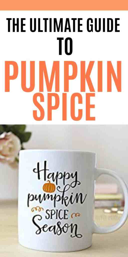 The ultimate guide to pumpkin spice everything. For the basic that lives in all of us, get your pumpkin spice on with these must-have items for fall. Pumpkin spice coffee, soap and even fall onesies for babies, there is something for every fall fan. If you love pumpkin spice lattes and everything pumpkin, check out this list for the best pumpkin flavored products out there.