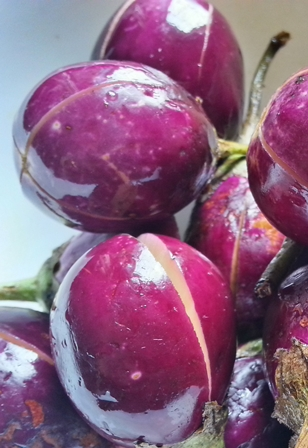 slit brinjals for eggplant curry recipe