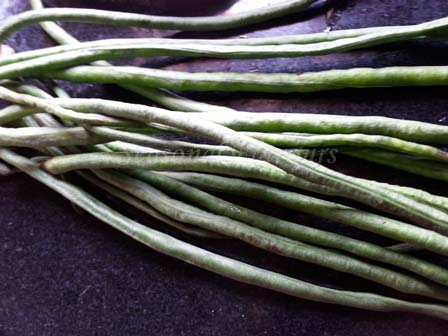 Yard long beans