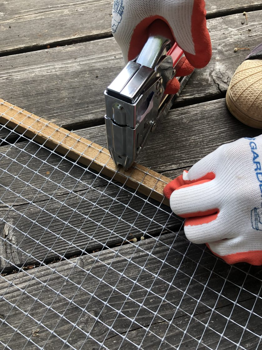 Staple gunning the fencing onto the wood stake