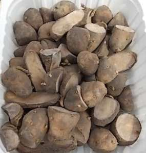 potatoe seeds