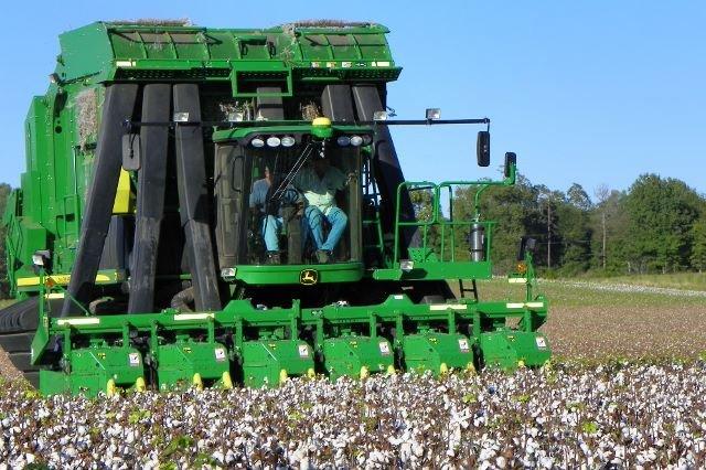 Harvest Time 2013-10-08 004 (640x426)