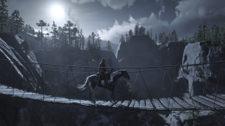 Red Dead Redemption 2 (41)