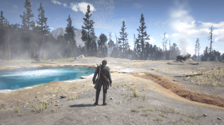 Red Dead Redemption 2 (42)
