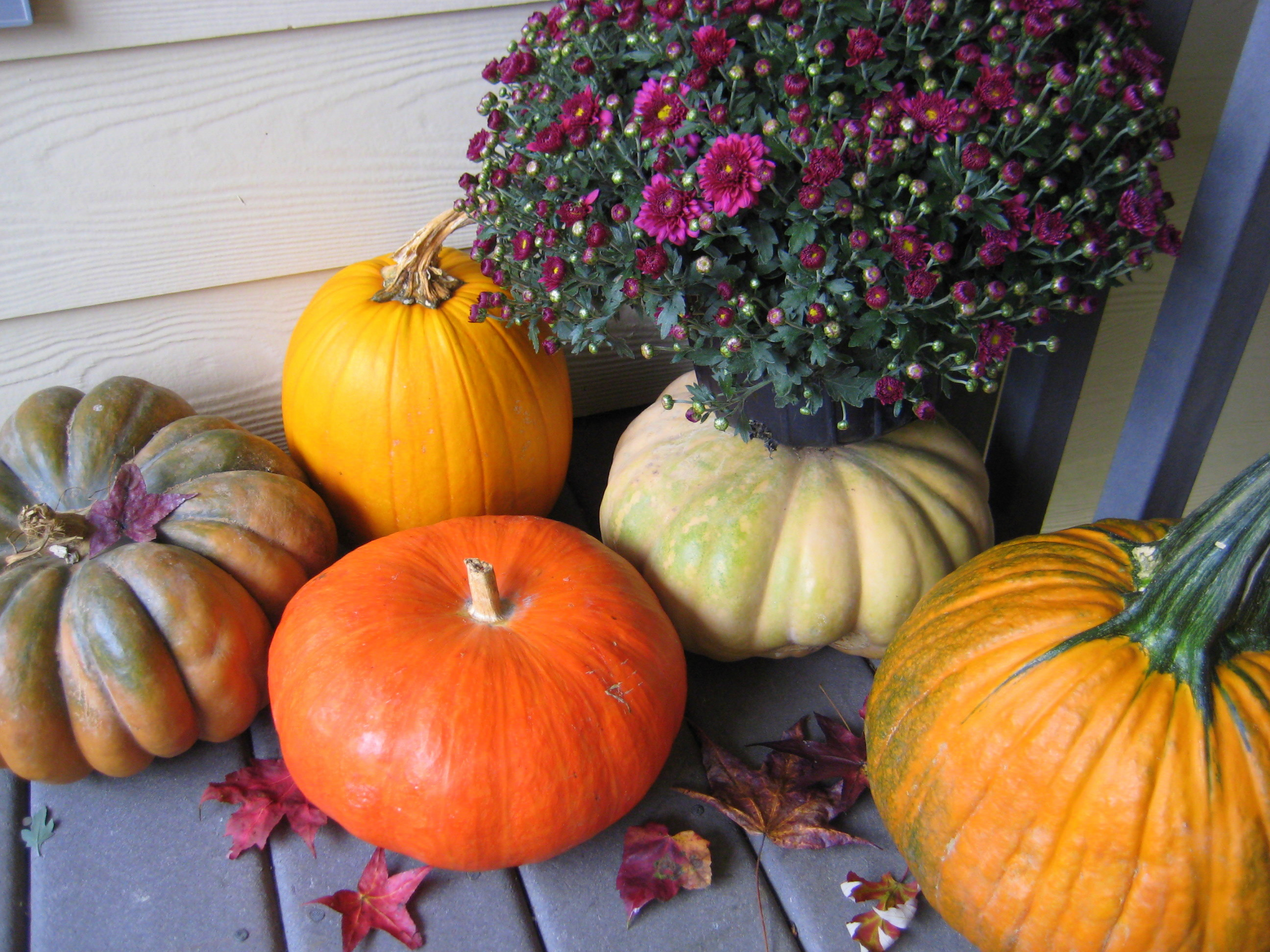 My fall doorstep decor!