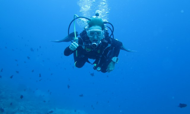 Diving 03