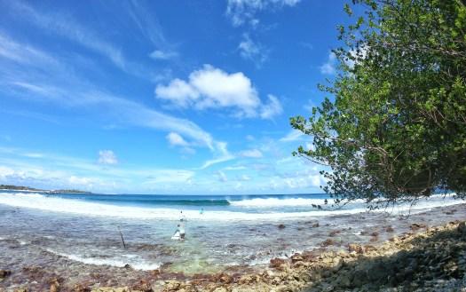 Season Surfing 005.JPG