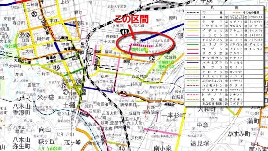 仙台街路樹マップ(五輪)