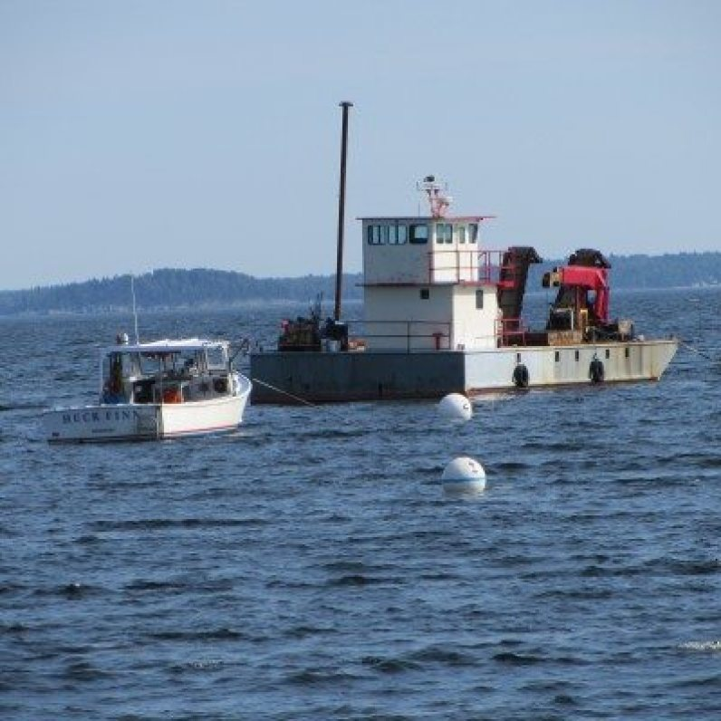 Fishing vessels in the penobscot bay, the water is so blue..
