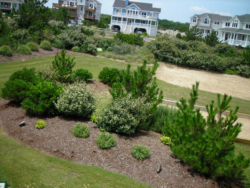 corolla-landscaping-design-1