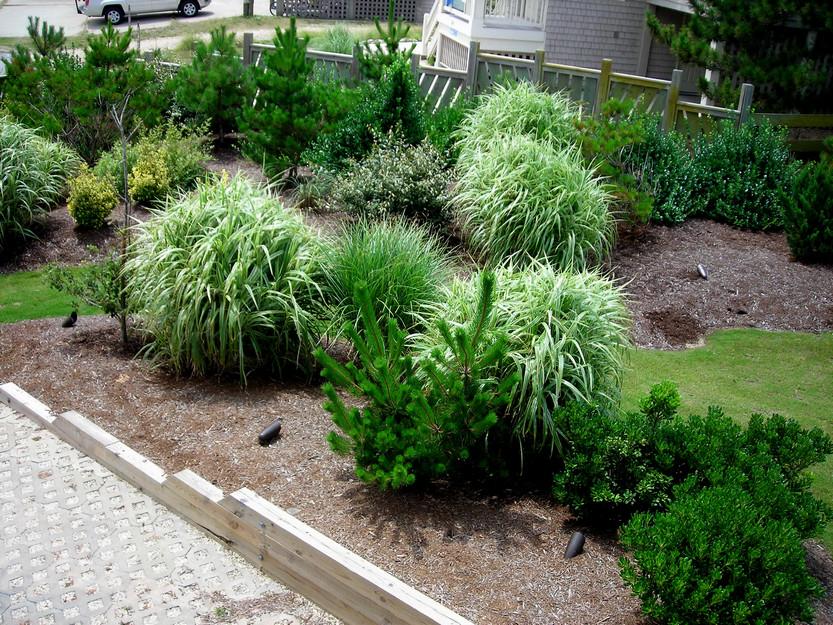 corolla-landscaping-design-2