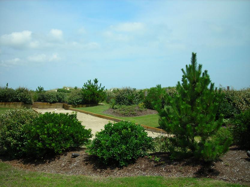 corolla-landscaping-design-4