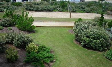 landscaping-corolla-lawn