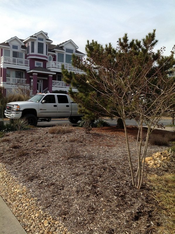 corolla-landscaping-before-3