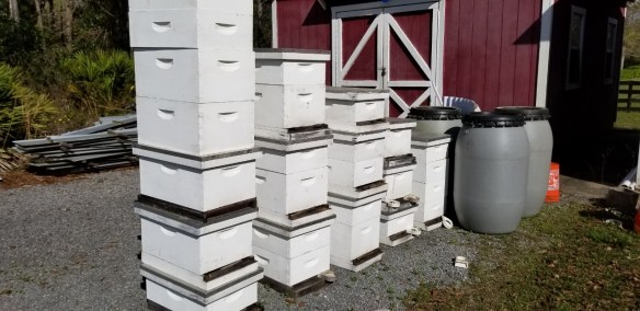 Hives to be tidied