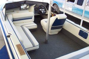 Upholstery-Carpet