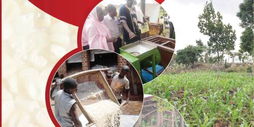 Implementing the East African Community Maize Grain Standards: Challenges Faced by Value Chain Actors