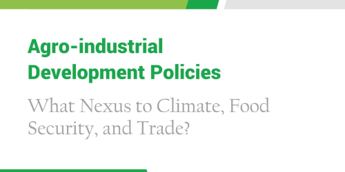 Agro-Industrialization Policies: What Nexus to Climate, Food Security and Trade?