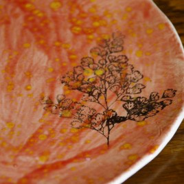 Emily's red speckled plate with fern