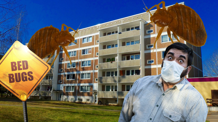 man wondering what the best thing to kill bed bugs in your building