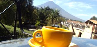 seattle coffee scene in Guatemala