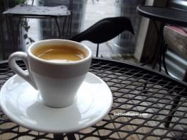 West Seattle coffee, Seattle Coffee