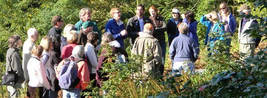 Color photo of about 25 people gathered together in middle of vegetated meadow.