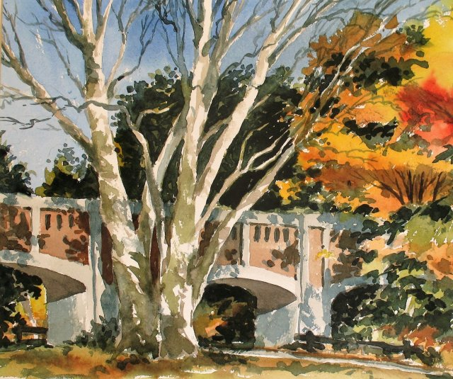 watercolor of large white-trunked tree in front of bridge