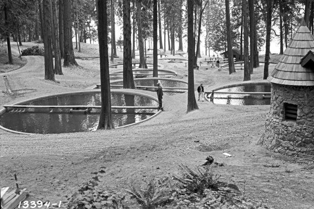 black and white photo of nine circular fish ponds