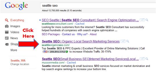 seattle seo search