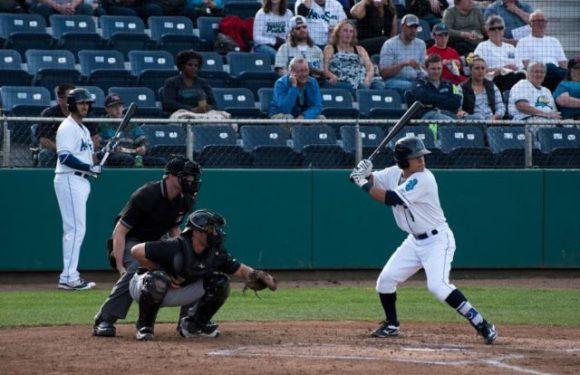 Everett AquaSox Spotlight: Shortstop Bryson Brigman