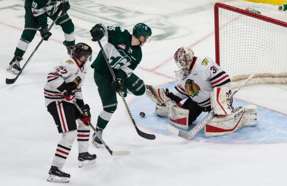 Silvertips win 4-0 over the Winterhawks taking playoff series