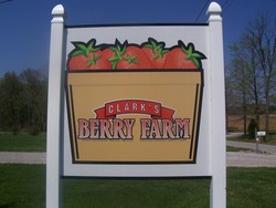 clarks berry farm